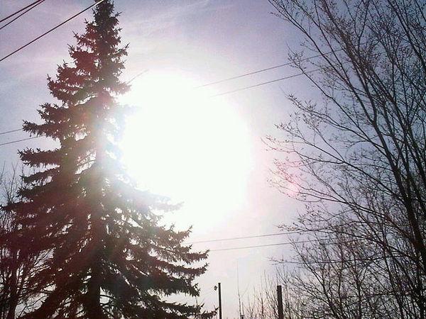 la vitamine D est la vitamine du soleil car les apports alimentaires sont insuffisants et le soleil manque en hiver