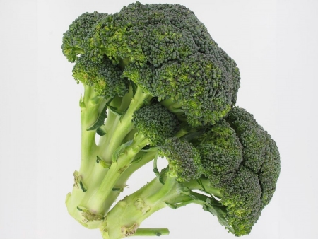 Parmi les aliments sains le brocoli est un des meilleurs légumes pour des repas de nutrition santé