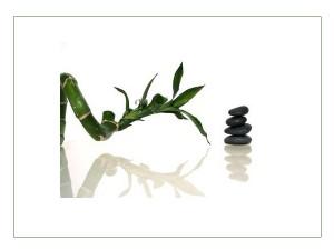 harmonie zen à la maison grâce au feng shui et à l'utilisation du pa kua