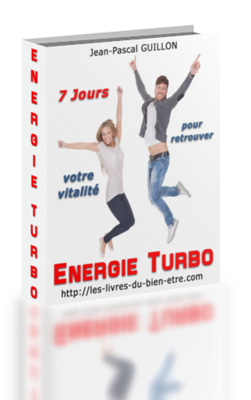 cover-energie-250x400