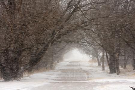 Le mauvais temps ne doit pas vous empêcher de pratiquer du sport en hiver