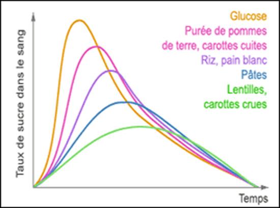 comparatif de plusieurs aliments selon leur IG ou indice glycémique