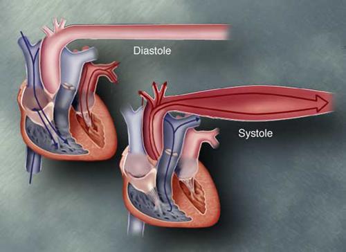 les 2 valeurs à suivre en contrôle d' hypertension correspondent à la diastole et à la systole cardiaque