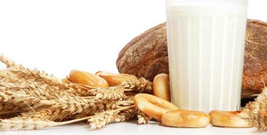 Des allergies alimentaires peuvent être déclenchées par les céréales et les produits laitiers
