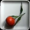Les agrumes regorgent de vitamines et autres nutriments essentiels