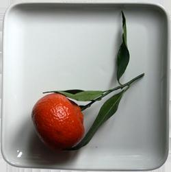 Nutriments essentiels : pourquoi les manques de vitamines ou minéraux sont plus fréquents qu'on le pense ?