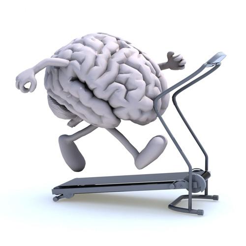 Et si on se faisait une cure détox du cerveau ?