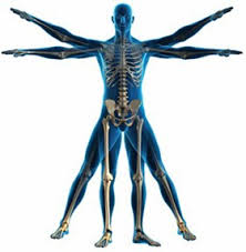 Ostéopathie et bien-être: les bienfaits de cette thérapie manuelle