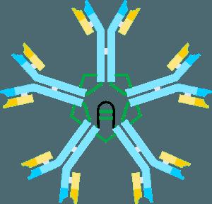 10 astuces pour renforcer naturellement ses défenses immunitaires
