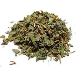 Desmodium adscendens – La plante médicinale pour le foie et les voies respiratoires